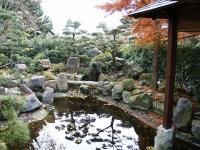 Für den Japangarten