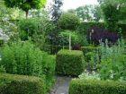 Buxbaum - Kreativität im Garten